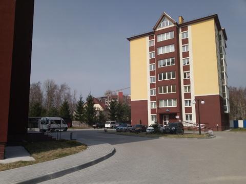 Сдам посуточно квартиру в центре Светлогорска-2 - Фото 1
