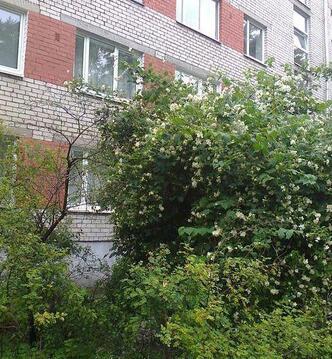 Продажа квартиры, Купить квартиру Юрмала, Латвия по недорогой цене, ID объекта - 313140839 - Фото 1