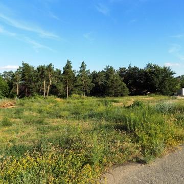 Земельный участок 28 сот в закрытом поселке Латошинка - Фото 3