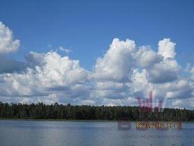 Земельные участки, Рябиновая, д.25 - Фото 4