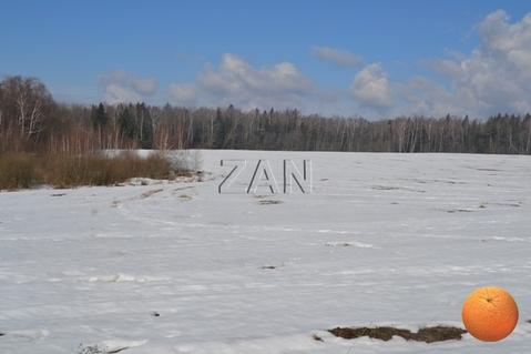 Продается участок, Новорижское шоссе, 45 км от МКАД - Фото 3