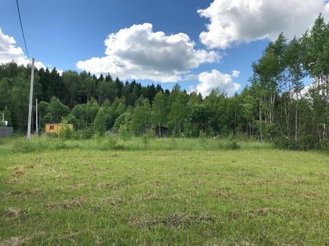 Продам шикарный ровный участок у леса на солнечной стороне. - Фото 1