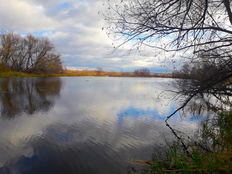 Ильинское ш. 8км. д. Глухово участок 47 соток в 1-й линии от воды - Фото 3