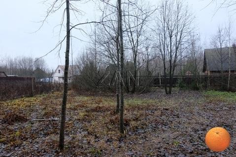 Продается участок, Новорижское шоссе, 37 км от МКАД - Фото 4