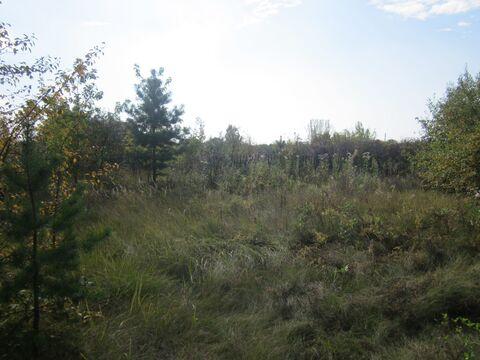 Участок в районе оз.Орлово - Фото 3