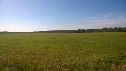 Участок земли 10 гектар для сельхоз.производства - Фото 3