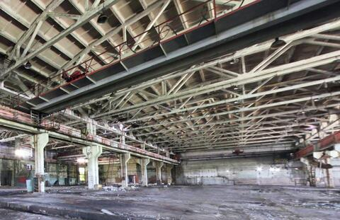Сдам производственный цех 14 968 кв.м. - Фото 3