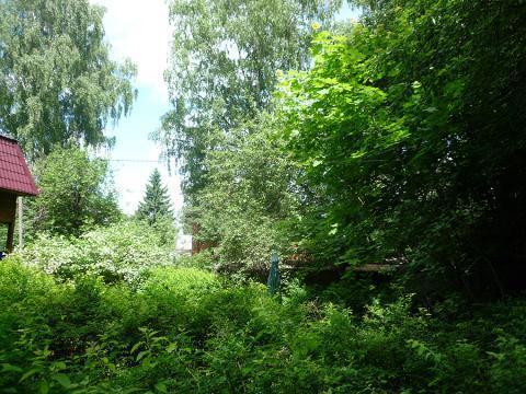 Жилой дом с участком г. Химки, мкрн Сходня по Ленинградскому шоссе - Фото 3