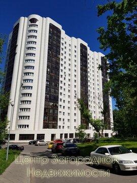 Помещение свободного назначения, Пионерская, 114 кв.м, класс B+. . - Фото 1