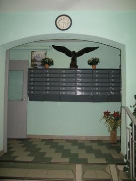 Продажа 3-х комнатной квартиры в П-44т, м.Выхино - Фото 5