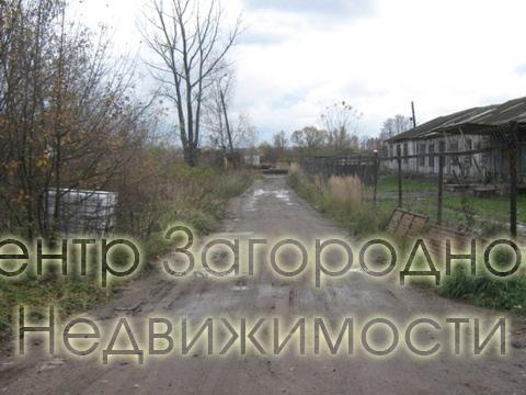 Участок, Киевское ш, Калужское ш, 75 км от МКАД, Балабаново. Киевское . - Фото 2