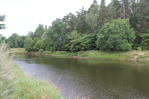 Участок на берегу красивой реки Плюсса - Фото 2