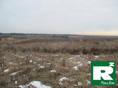 Продается земельный участок 60 сот, Калужская область, Малоярославецки - Фото 4