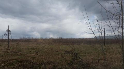 Продам земельный участок 25 соток (ИЖС), д.Плюсково - Фото 1