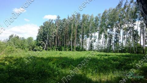 Каширское ш. 55 км от МКАД, Ляхово, Участок 6 сот. - Фото 4
