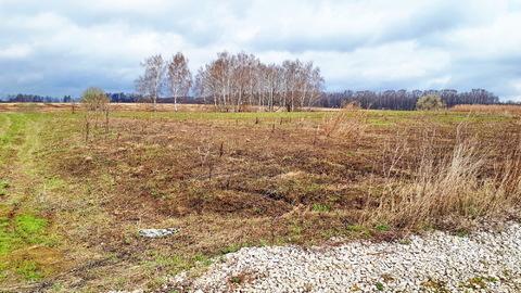 1га для ЛПХ, окраина деревни Ненашево, граничит с оврагом и прудиком - Фото 4