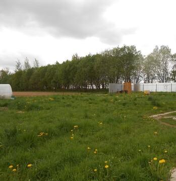 Продажа дома в деревне Неронов Бор (Поозерье) - Фото 2