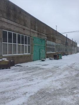 Сдается теплое производственно-складское помещение 1000м2, д.Кипень - Фото 3