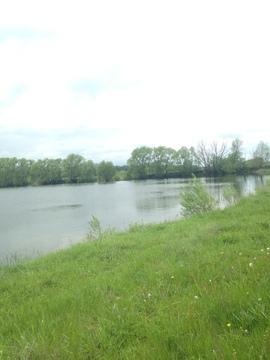 Купить озеро в Тульской области - Фото 1