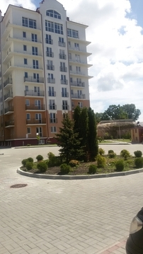 1-комнатная квартира Васильково п. Шатурская ул. - Фото 2