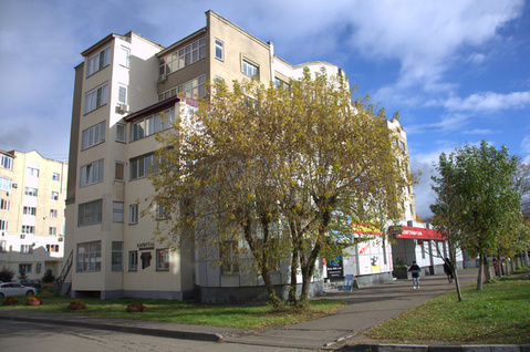 Квартира в центре города с парком в придачу - Фото 2
