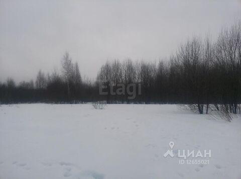 Продажа участка, Зарубино, Костромской район, 25 - Фото 2