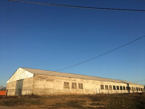 Продается Имущественный комплекс в Солнечногорском р-не д. Погорелово - Фото 4