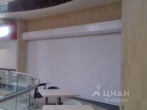 Аренда торгового помещения, м. Приморская, Проспект Малый . - Фото 1