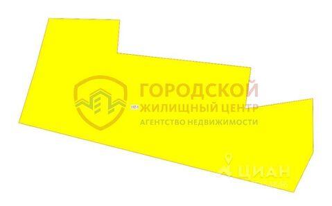 Участок в Новосибирская область, Новосибирский район, пос. . - Фото 2