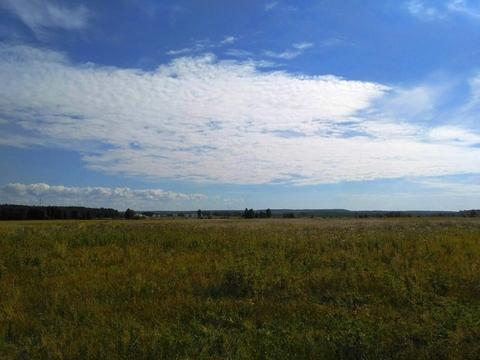 Судогодский р-он, Конюшино д, земля на продажу - Фото 2