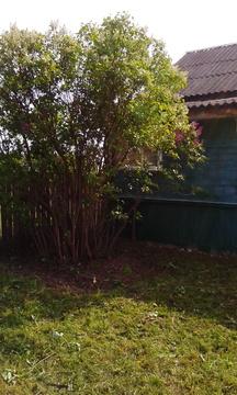 Продается дом в деревне Варваровка Касимовского района Рязанской обл - Фото 3