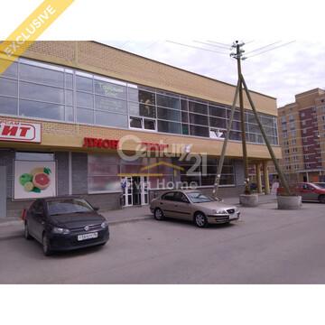 Универсальное помещение, Михеева 12 - Фото 2