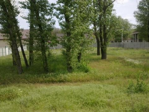 Земельные участки, ул. Центральная, д.7 - Фото 5
