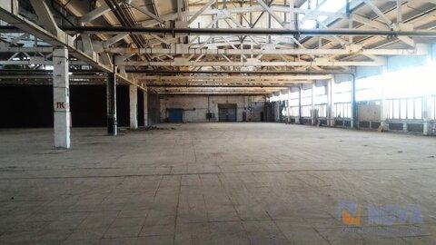 Без комиссии. Сдается производственное помещение, 4000 м2 - Фото 4