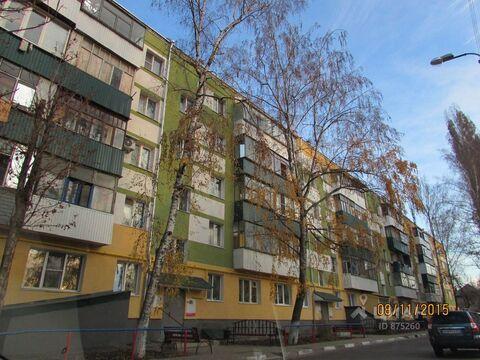 Аренда комнаты, Белгород, Ул. Курская - Фото 1