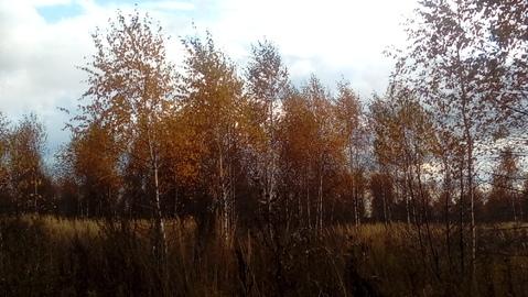 Большое Петровское 10 соток, знп для ИЖС, 53 км от МКАД. - Фото 3