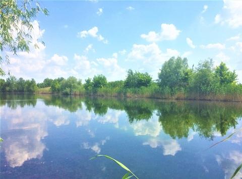 1400 соток с прямым выходом на пруд всего в 3 км. от горо - Фото 1