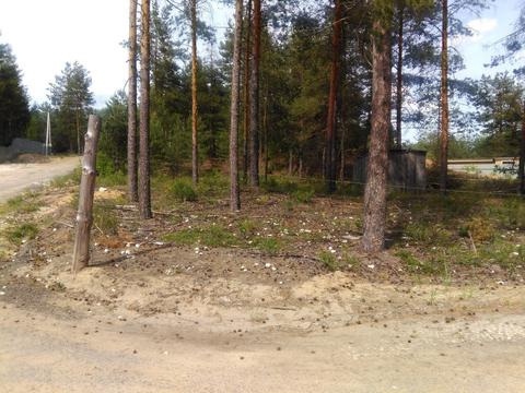 Судогодский р-он, Улыбышево п, земля на продажу - Фото 5