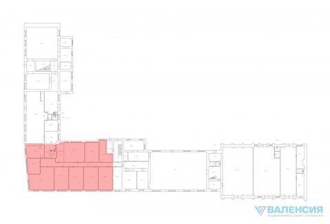 Аренда торгового помещения 474м2, 1эт, Аптекарьская наб, д.12 - Фото 5