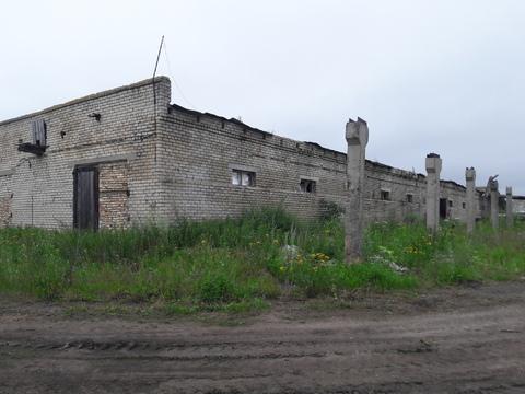 Комплекс-ферма в с.Ефимьево городского округа Переславль-Залесский - Фото 3