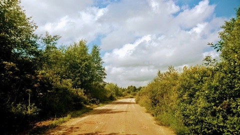 Земля сельхоз. назначения для сельхоз. производства - Фото 1