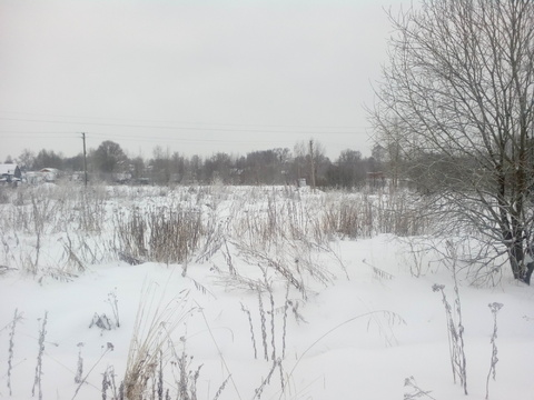 Продается земельный участок в с. Толбухино - Фото 2