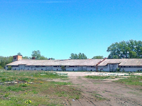 Продажа зернохранилища 1493 м2 на участке 1,2 га - Фото 1