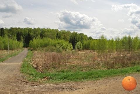 Продается участок, Дмитровское шоссе, 40 км от МКАД - Фото 2