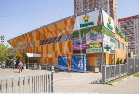 Аренда помещения в ТЦ Ларец, 610 кв.м - Фото 3