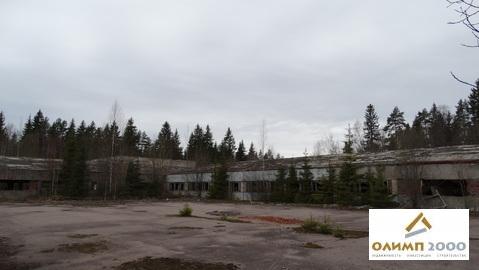 Склад 2423 м.кв. с участком земли 1,44 Га - Фото 1