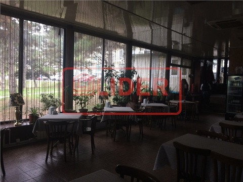 Оборудованный Бар/Ресторан пр-кт Ген. Острякова (Без Комиссии) - Фото 2