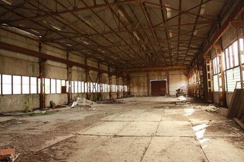 Продажа склада в Воронежской области - Фото 4