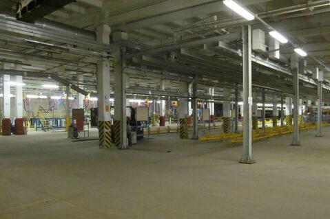 Аренда склада и производства 5232м2 - Фото 3