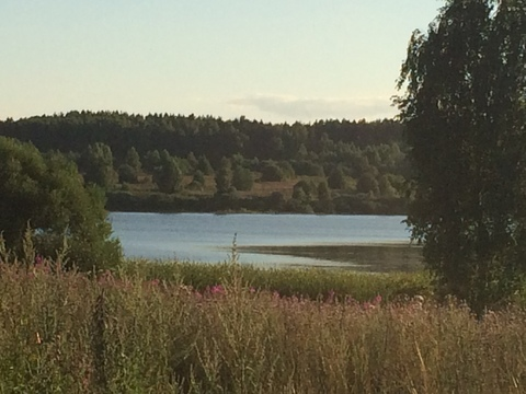 Участок на берегу Озернинского водохранилища - Фото 2